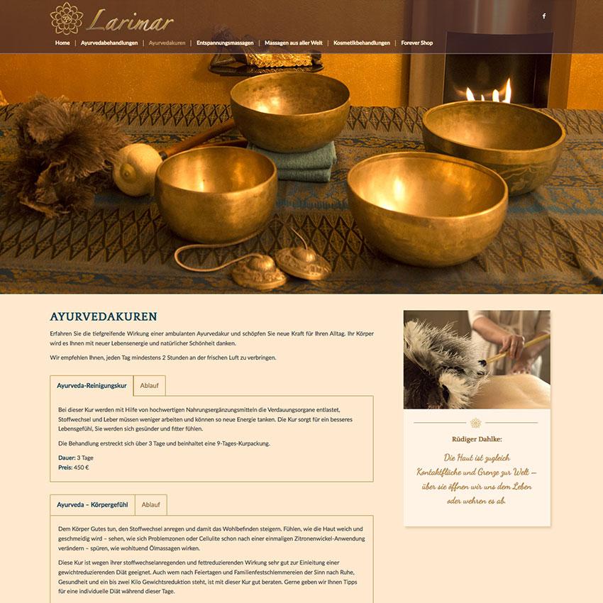 Internetseite Larimar Penzing