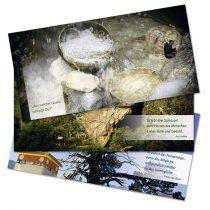 Gestaltung von Spruchkarten, Postkarten